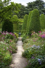 Pretty English garden with clipped topiary.