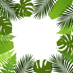 Tropical leaves background. Frame with palm,fern,monstera and banana leaves. Vector illustration