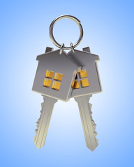 Bunch of two silver house-shape keys on a key ring on blue background