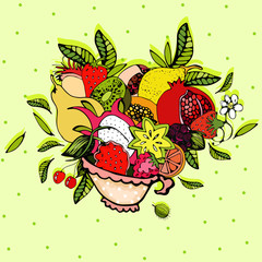 Illustrations of fruit
