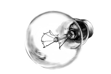 Light bulb in black and white tone