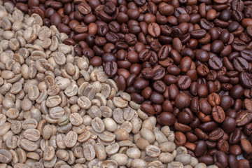 full lot of arabica coffee beans