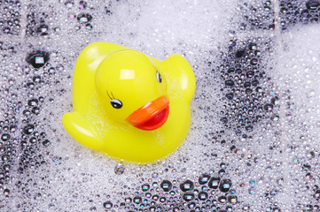 Rubber Duck and Bubbles