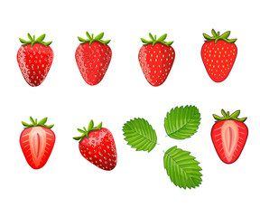 Set of strawberries. Different styles of strawberries illustrations. Can be used in your own design, illustration, appearance and etc.