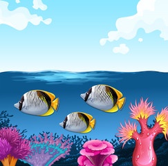 Three fish swimming under the ocean