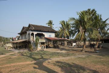 Casas de madera camboyana en los campos de cultivos. Kampot, Camboya