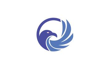 head falcon mascot logo