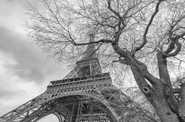 Black and white view of Eiffel Tower in Paris, France