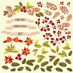 Vintage Christmas set with isolated elements for your banners design: flower, leaves and berries. Can be used for invitation, decoration party. Vector illustration