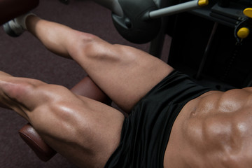 Quadriceps Exercises