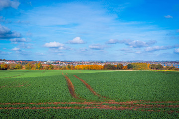 Tracks on a field near a city