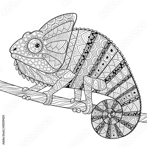 Chameleon Adult Antistress Coloring Page Black And White Hand Drawn Doodle For Book