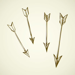 Arrows. Vector drawing