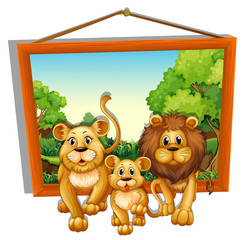 Photo frame of lion family