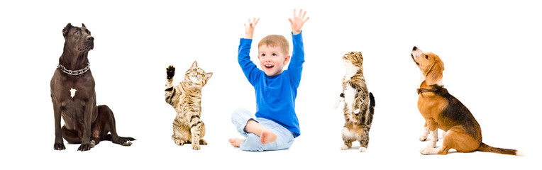 Group of a cheerful kid and pets