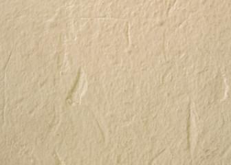 Beige tone color concrete wall