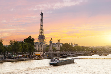 Paris, Tour boat on the Seine river at sunset Wall mural