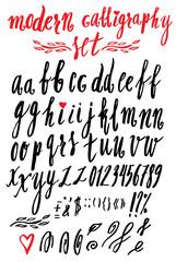 Vector handmade modern calligraphy Roman alphabet script