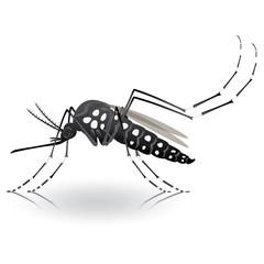 Nature, Aedes aegypti mosquitoes stilt