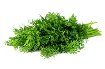 Dill (isolated on white background)