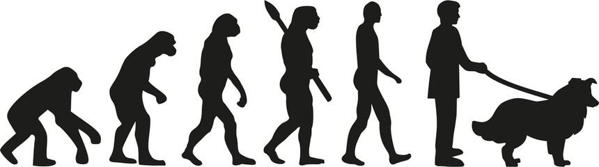 Collie dog evolution