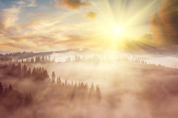 Keuken foto achterwand Beige Majestic landscape with forest