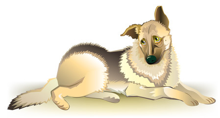 Illustration of sad dog, vector cartoon image.