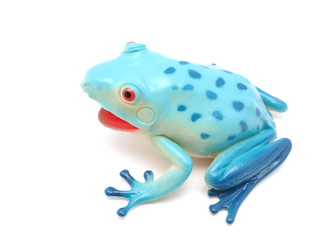 blue toy frog on white background