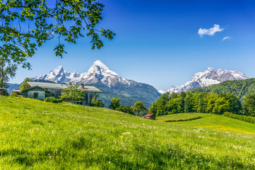 Wall Mural - Idyllic mountain scenery in the Alps with green meadows and farmhouse in springtime