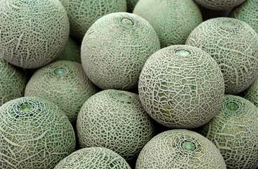 Closeup of cantaloupe melon