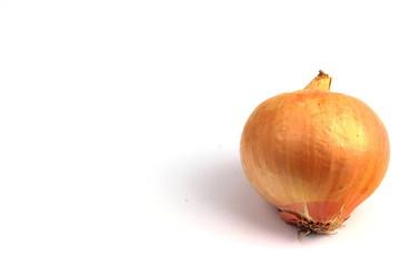 a healthy onion