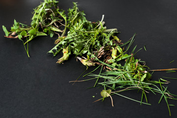 Different types of grass on the black background