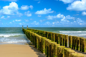 Breakwaters on the beach in Domburg