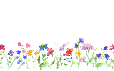Background with hand drawing watercolor wild flowers on white. Seamless banner. Hand painting color copy space border.