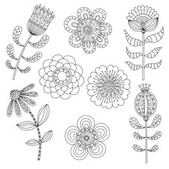 Set of abstract floral elements. Hand drawn doodle. Vector illustration