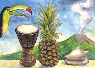Exotic still life. Watercolor painting. Pineapple, drum, Toucan, sea shell, volcano