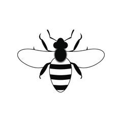 Bee black simple icon