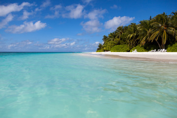 Canvas Prints Green coral Maldives, view from the water to the island with palm beach and the blue sky