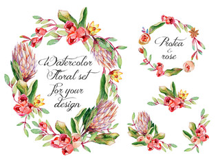 Watercolor floral set with protea, roses for your design.