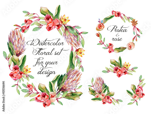 Quot Watercolor Floral Set With Protea Roses For Your Design