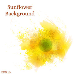 Sunflower background. Watercolor yellow flower.