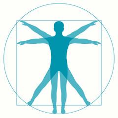 Leonardo Da Vinci Vetruvian Man, human anatomy
