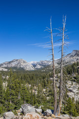 View from Olmsted point on the Tioga pass in Yosemite