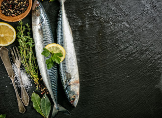 Fresh mackerels placed on dark stone background