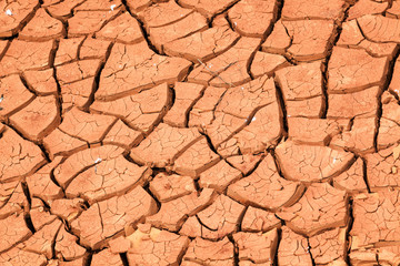 cracked soil because of drought