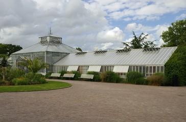 Palm House in Gothenburg city in Sweden.