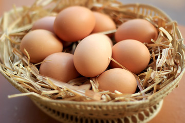 Healthy organic eggs in one basket raw material