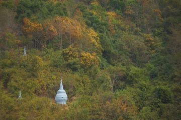 Pagodas in the forest at Win Sein Taw Ya in Kyauktalon Taung, near Mawlamyine, Myanmar.