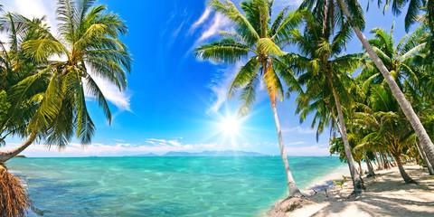 Karibischer Traumstrand mit Palmen :) Fototapete