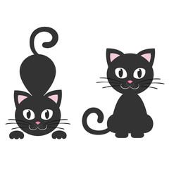 cat black set